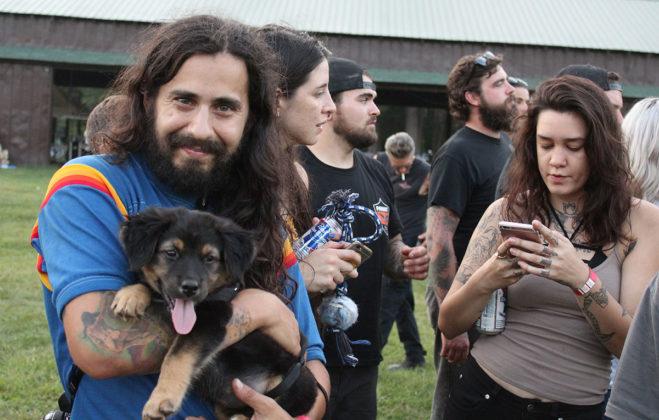 Gypsy Run X Puppy